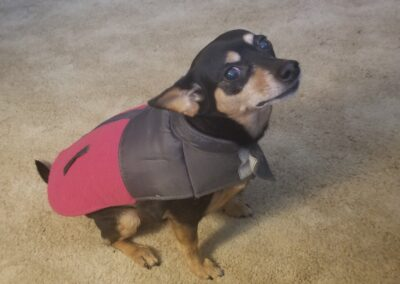 Chloe with Winter Coat